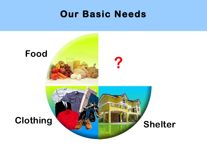 Our Basic Needs